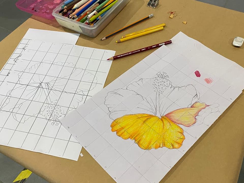Fotos: Sábados Creativos – Dibujo de Proporción de Flor de Maga